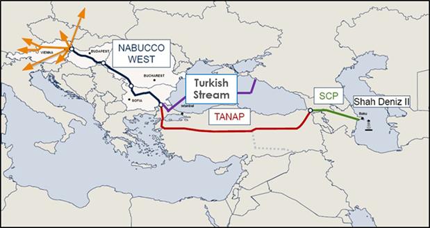 Turk pic